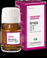 Lehning Arnica Complexe N° 1 Solution Buvable En Gouttes Fl/30ml à Bassens