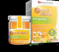Forte Pharma Propolis Intense Gelée Pot/40g à Bassens