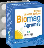 Lehning Biomag Comprimés à Croquer Agrumes B/90 à Bassens