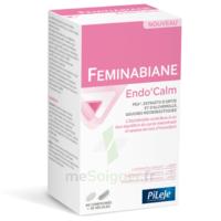 Pileje Feminabiane Endo'calm Comprimés + Gélules B/60+30 à Bassens