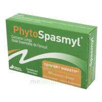 Phytospasmyl Caps B/60 à Bassens