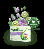 Phytoxil Transit Comprimés B/20 à Bassens