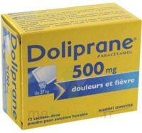 DOLIPRANE 500 mg Poudre pour solution buvable en sachet-dose B/12 à Bassens