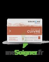 GRANIONS DE CUIVRE 0,3 mg/2 ml S buv 30Amp/2ml à Bassens