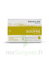 GRANIONS DE SOUFRE 19,5 mg/2 ml S buv 30Amp/2ml à Bassens