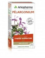 Arkogélules Pélargonium Gélules Fl/45 à Bassens