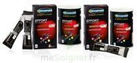 Ergysport Effort Poudre pour boisson pêche Pot/450g à Bassens
