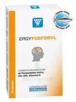 Ergyfosforyl Caps B/60 à Bassens