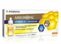 Arkoroyal Défenses Naturelles Gelée Adulte 7 Doses/10ml à Bassens