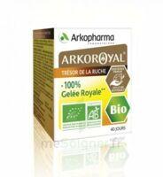 Arkoroyal 100% Gelée Royale Bio Gelée Pot/40g à Bassens