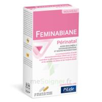 Pileje Feminabiane Périnatal 28 Gélules Blanches Et 28 Gélules Jaunes à Bassens
