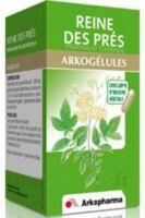 ARKOGELULES Reine des prés Gélules Fl/45 à Bassens