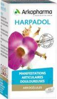 ARKOGELULES HARPAGOPHYTON, 150 gélules à Bassens