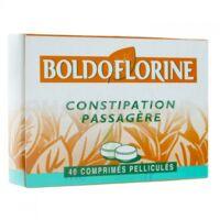 Boldoflorine 1 Cpr Pell Constipation Passagère B/40 à Bassens