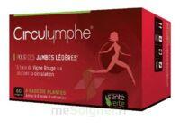 Santé Verte Circulymphe Triple Actions B/60 à Bassens