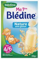 Blédina Ma 1ère Blédine Nature 250g à Bassens