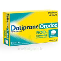 Dolipraneorodoz 500 Mg, Comprimé Orodispersible à Bassens