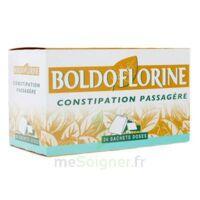BOLDOFLORINE, mélange de plantes pour tisane en sachet-dose B/24 à Bassens