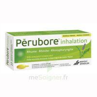 PERUBORE Caps inhalation par vapeur inhalation Plq/15 à Bassens