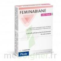 Feminabiane CBU Flash Comprimés à Bassens