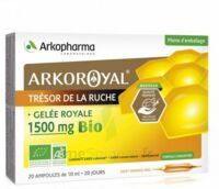 Arkoroyal Gelée royale bio 1500 mg Solution buvable 20 Ampoules/10ml à Bassens