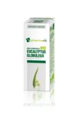 Huile essentielle Bio Eucalyptus Globuleux à Bassens