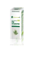 Huile Essentielle Bio Pin Sylvestre à Bassens