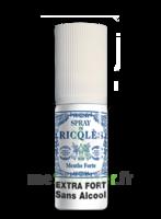 Ricqles Spray buccal sans alcool menthe 15ml à Bassens