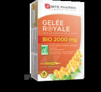 Forte Pharma Gelée royale bio 2000 mg Solution buvable 20 Ampoules/15ml à Bassens
