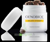 Oenobiol Solaire Intensif Caps peau normale Pot/30 à Bassens