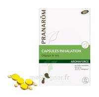 Aromaforce Caps Inhalation Bio B/15 à Bassens