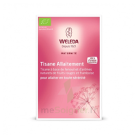 "Weleda Tisane Allaitement ""Fruits rouges"" 2x20g à Bassens"