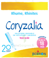 Boiron Coryzalia Solution Buvable Unidose B/20 à Bassens