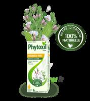 Phytoxil Toux Sans Sucre Sirop Adulte Enfant +2 Ans Fl/120ml à Bassens