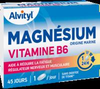 Govital Magnésium Vitamine B6 Comprimés B/45 à Bassens