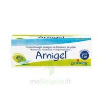 Boiron Arnigel Gel T(alumino-plastique)/45g à Bassens