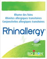 Boiron Rhinallergy Comprimés B/40 à Bassens