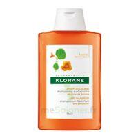 Klorane Capucine Shampooing 200ml à Bassens
