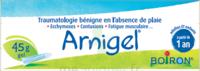 Boiron Arnigel Gel T/45g à Bassens